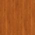 "Hardwood Red Oak Golden 3-1/4"""